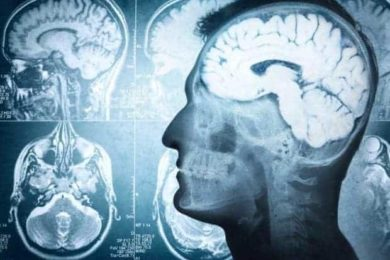 Scientists say they've identified area of the brain associated with alcohol addiction.