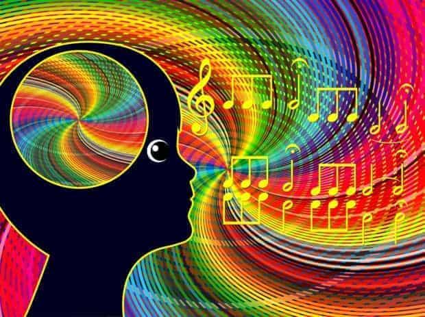 Brain Processing Music