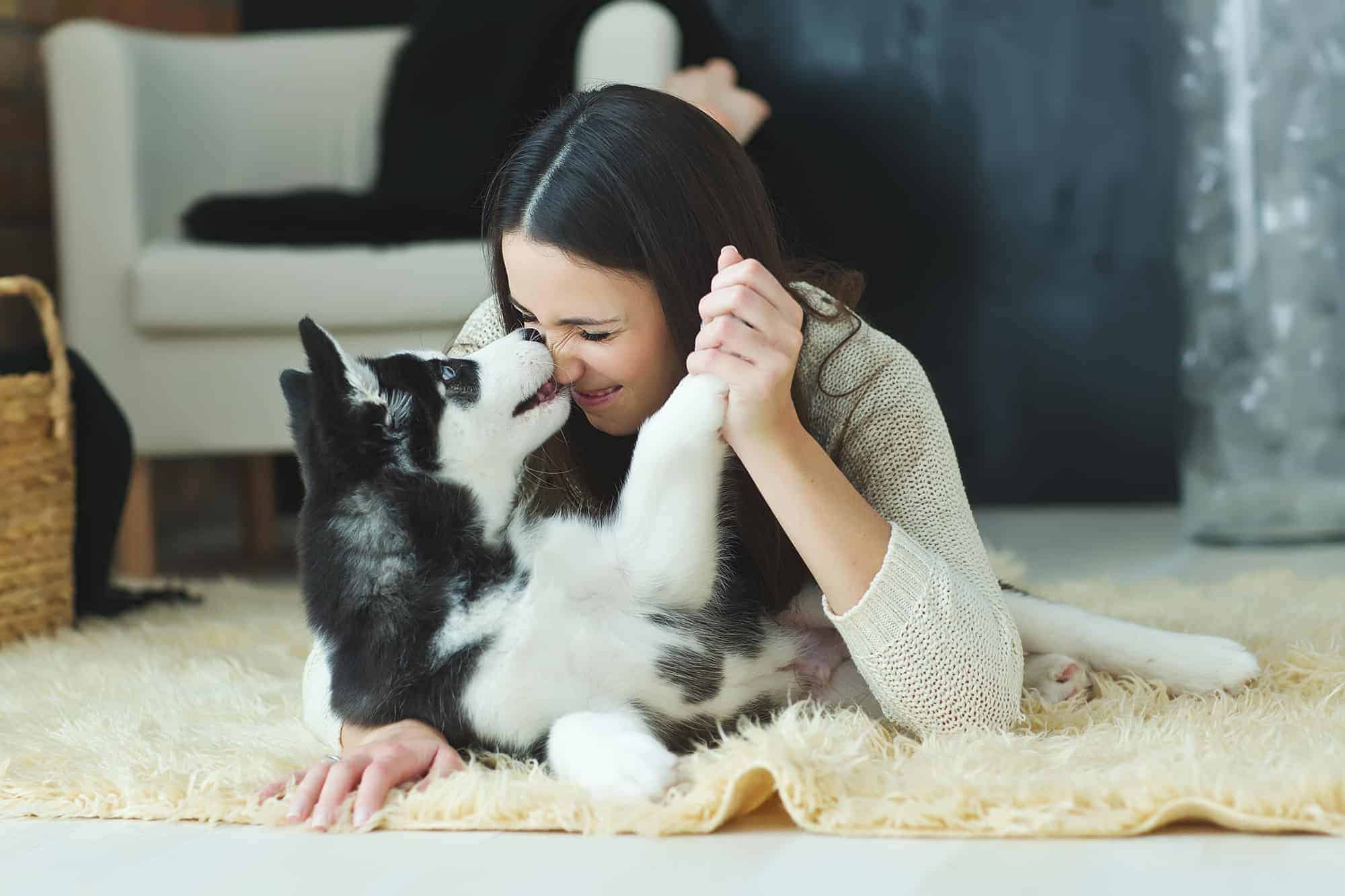 How Are Pets Helping Us Through the Pandemic?