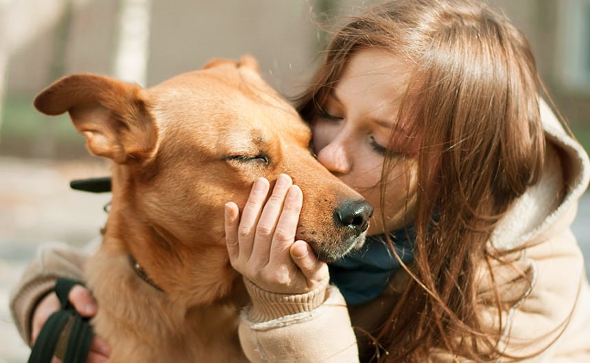 Pet-Friendly Alcohol and Drug Rehab